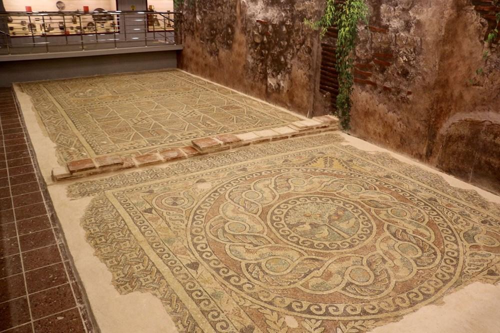 1800 yıllık elma mozaiği sergilenmeye başladı - 6