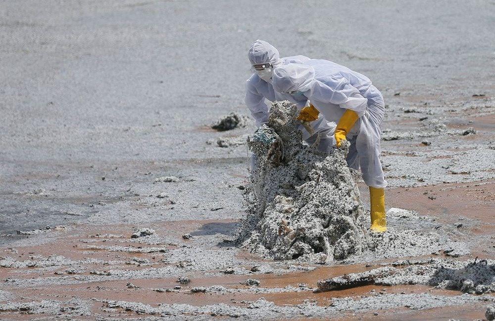 Kimyasal madde taşıyan gemi battı: Sri Lanka çevre felaketiyle karşı karşıya - 15