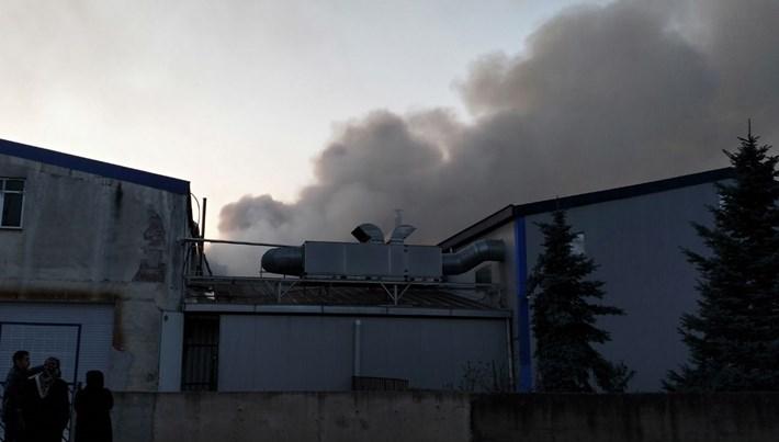Ordu'da fındık fabrikasında yangın