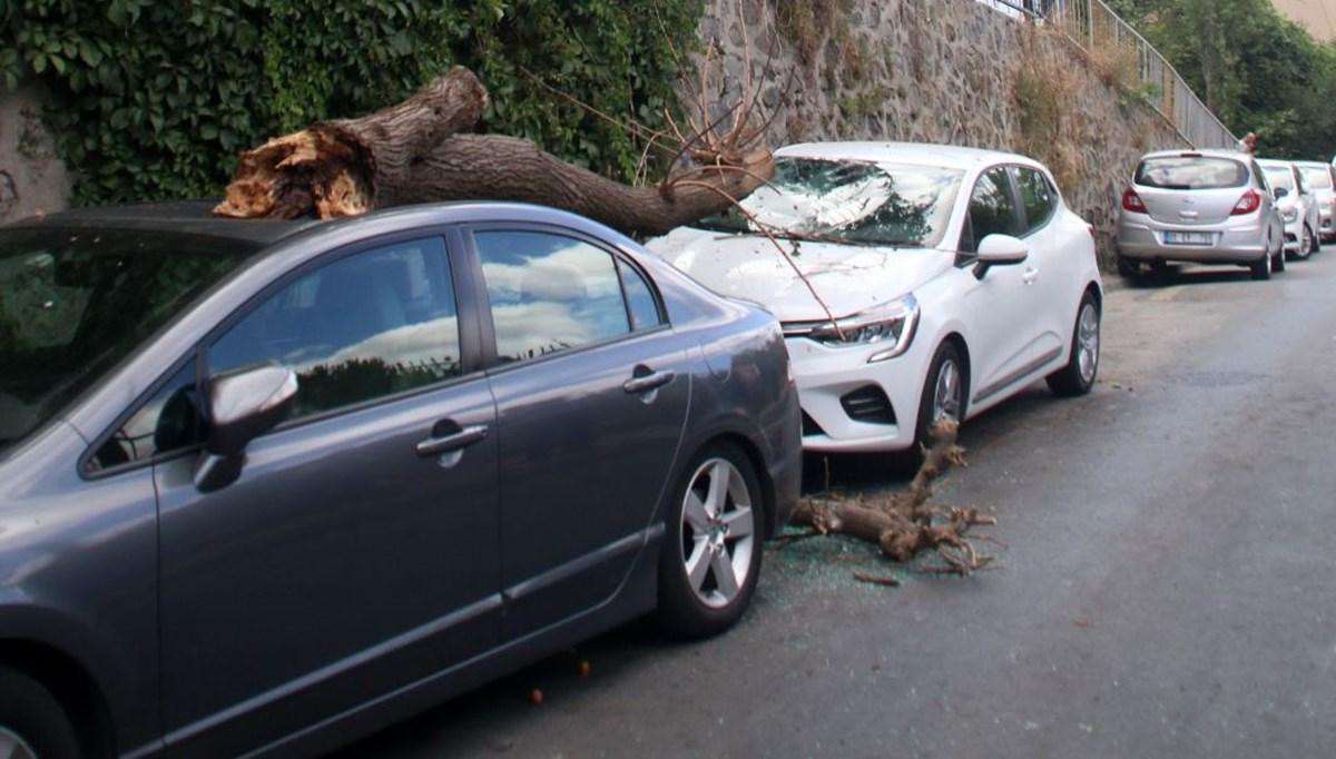 Park halindeki otomobillerin üzerine ağaç parçası düştü
