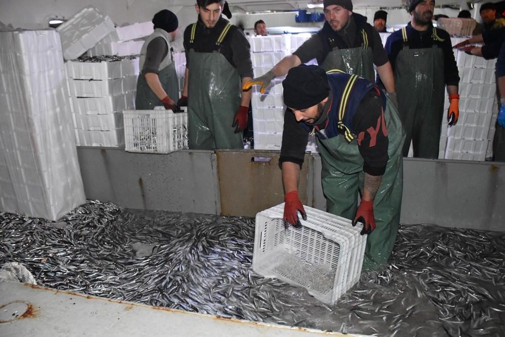 Balıkçılardan hamsi avının serbest olduğu İğneada'ya akın - 7