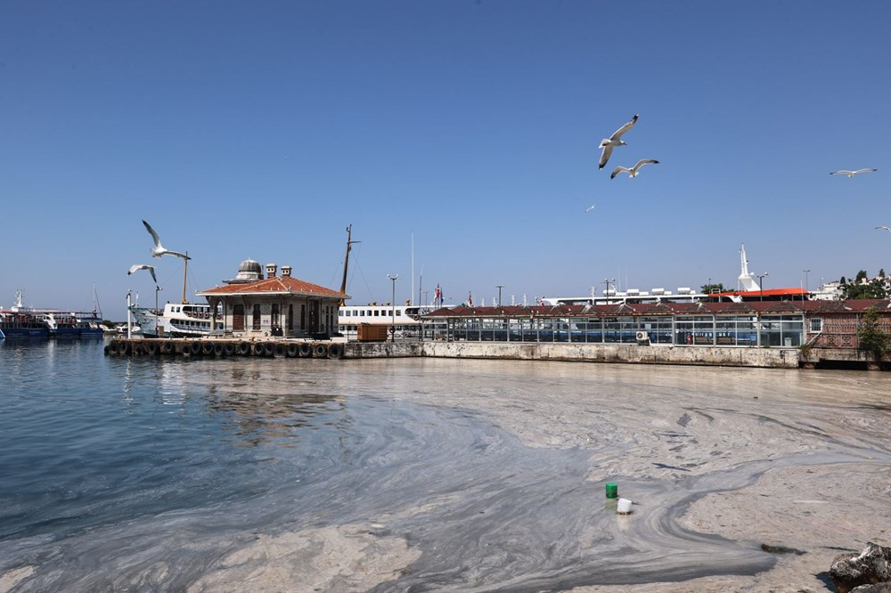 Marmara Denizi nasıl kurtulur? 3 aşamalı çözüm önerisi - 9