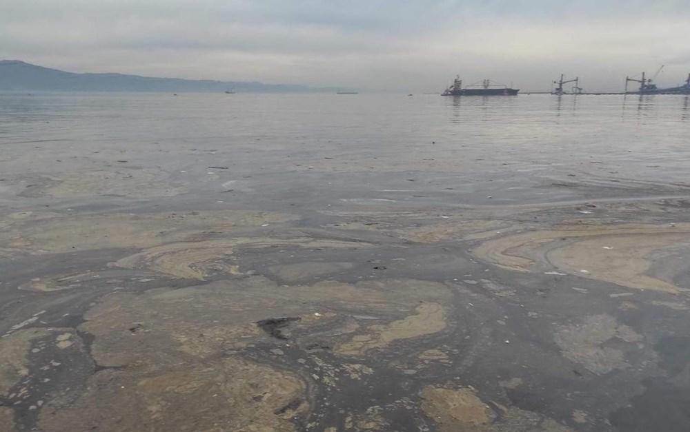 İzmit Körfezi'nde kimyasal kirlilik - 4