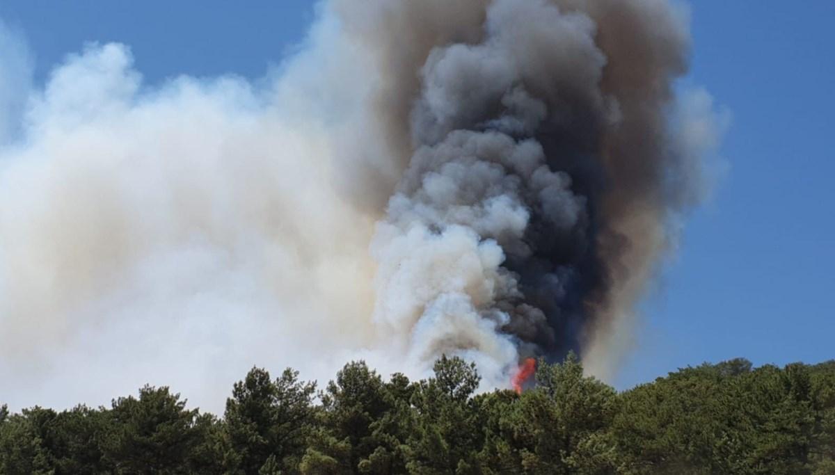 SON DAKİKA HABERİ: Bakan Pakdemirli:4 ilde çıkan 6 orman yangını kontrol altına alındı