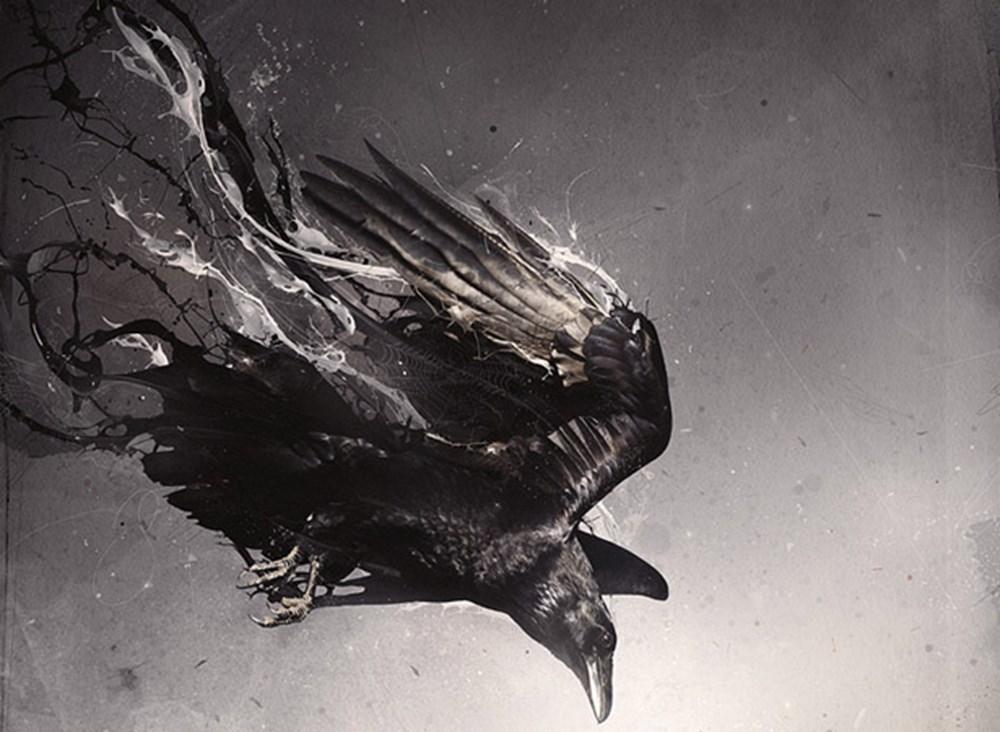 картинки ворона в огне непосредственной близости гостиницы