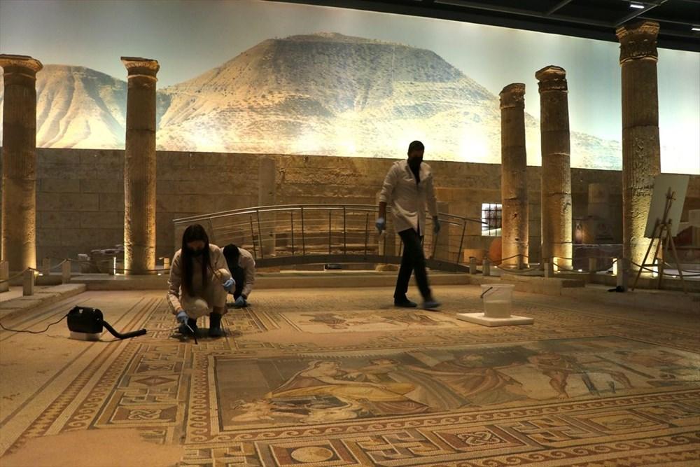 Zeugma Mozaik Müzesi'ndeki eserler, cerrah hassasiyetiyle temizlenerek geleceğe aktarılıyor - 9