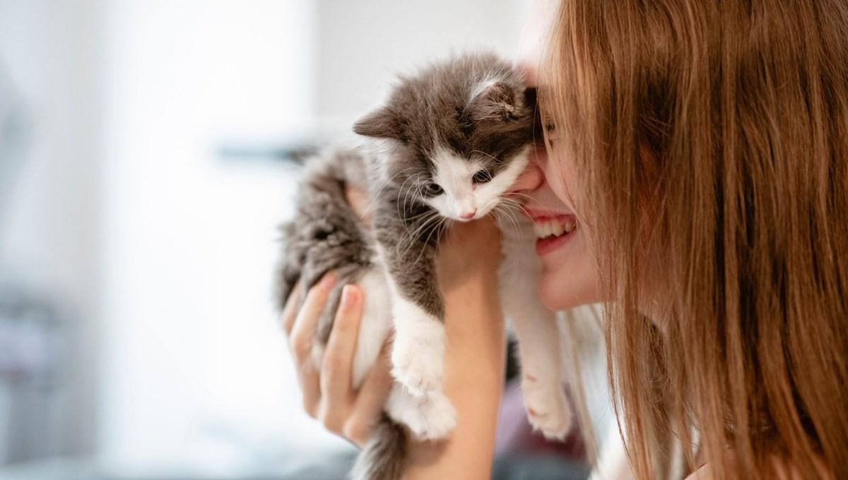 """Bilim insanları """"açık ilişki""""den """"eş bağımlılığa"""" kedilerle insanlar arasındaki 5 ilişki türünü ortaya koydu: Sizin kedilerle aranızda nasıl bir bağ var?"""