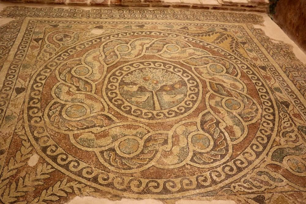 1800 yıllık elma mozaiği sergilenmeye başladı - 5