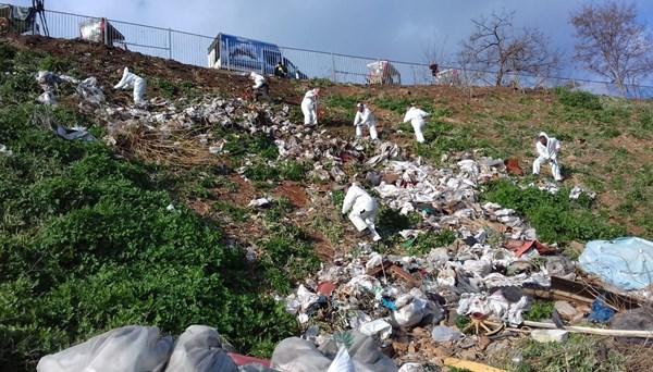 Adalar'daki fayton temizliğinden 25 ton atık çıktı