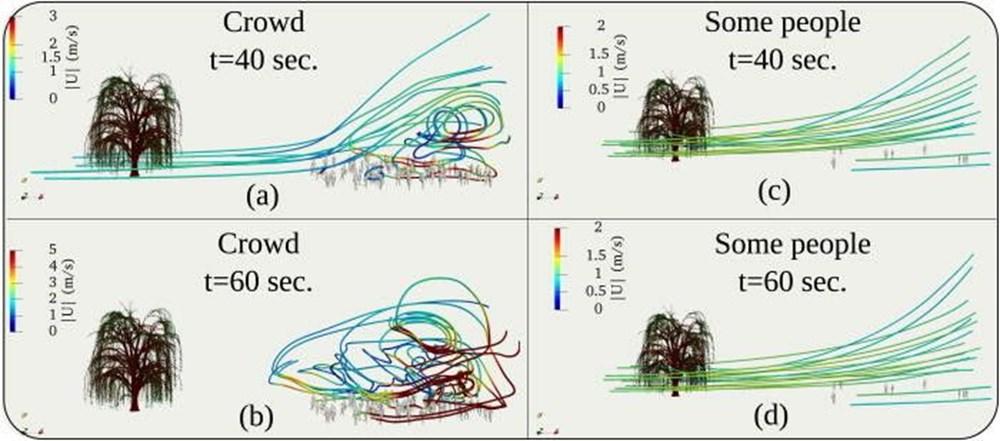 Corona virüs ağaçlardaki polenler aracılığıyla en az 20 metre uzağa yayılıyor - 3