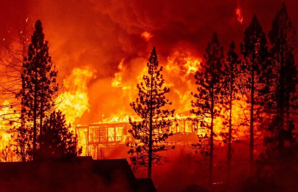 ABD'nin batısındaki orman yangınlarında ölü sayısı 15'e yükseldi - 5