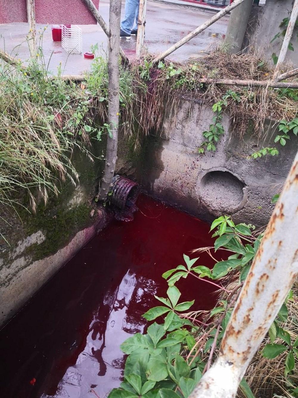 Kocaeli'de Kilez Deresi'ni atık su ile kırmızıya boyayan firmaya ceza - 4