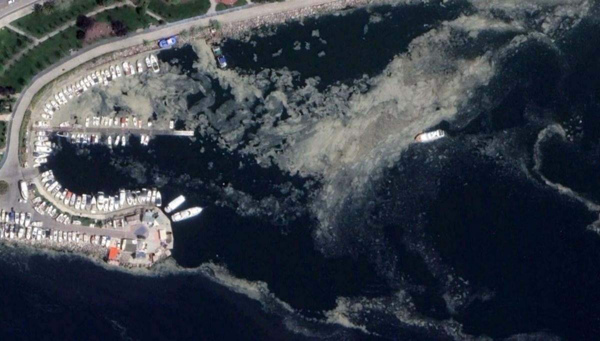 Korkutan müsilaj uyarısı: Akdeniz de risk altında