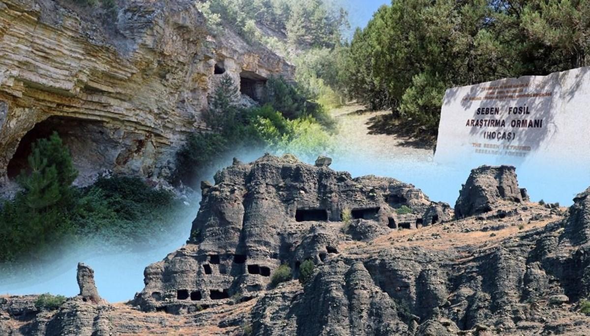 Seben'in görülmesi gereken 3 güzelliği 'kesin korunacak hassas alan' ilan edildi