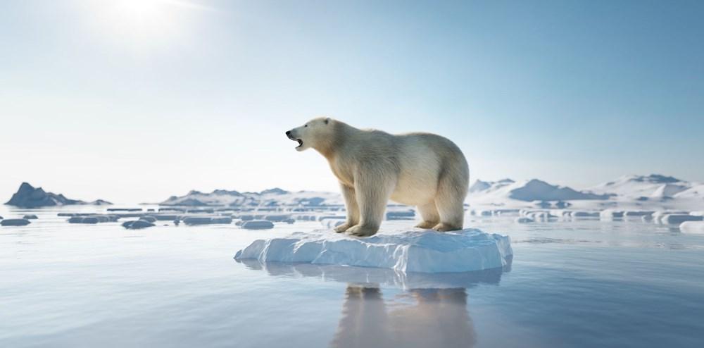Bilim insanlarından 2040 uyarısı: Kuzey Kutbu deniz buzu iki kat hızlı eriyor - 2