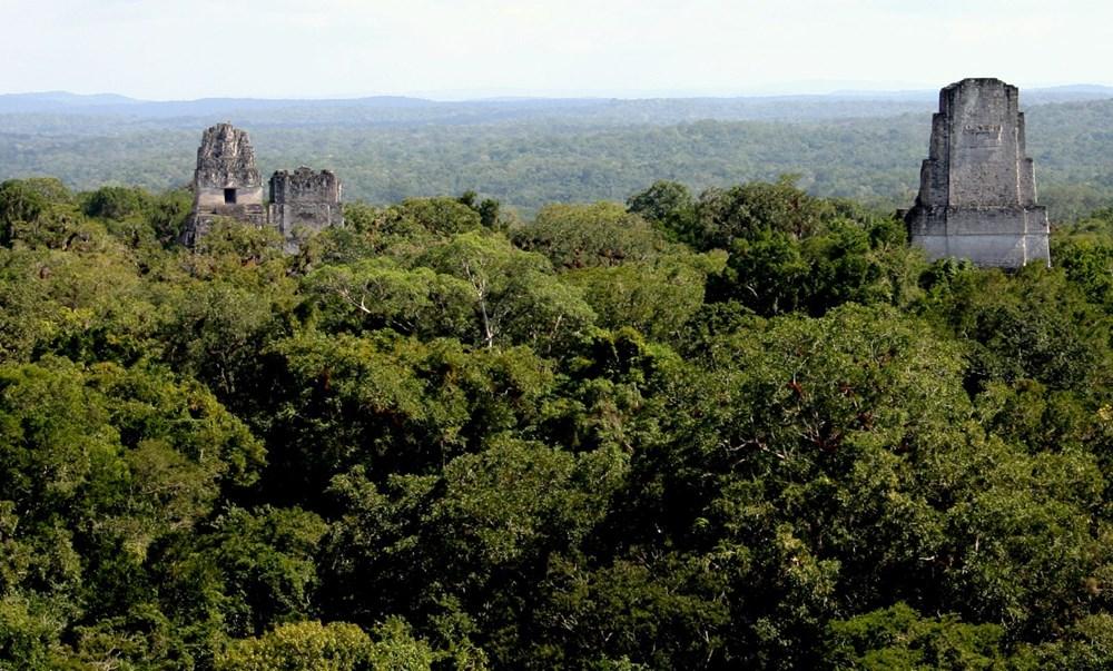 Mayalılar tarafından 2 bin yıl önce inşa edilen su arıtma tesisi bugün işe yarayabilir - 6