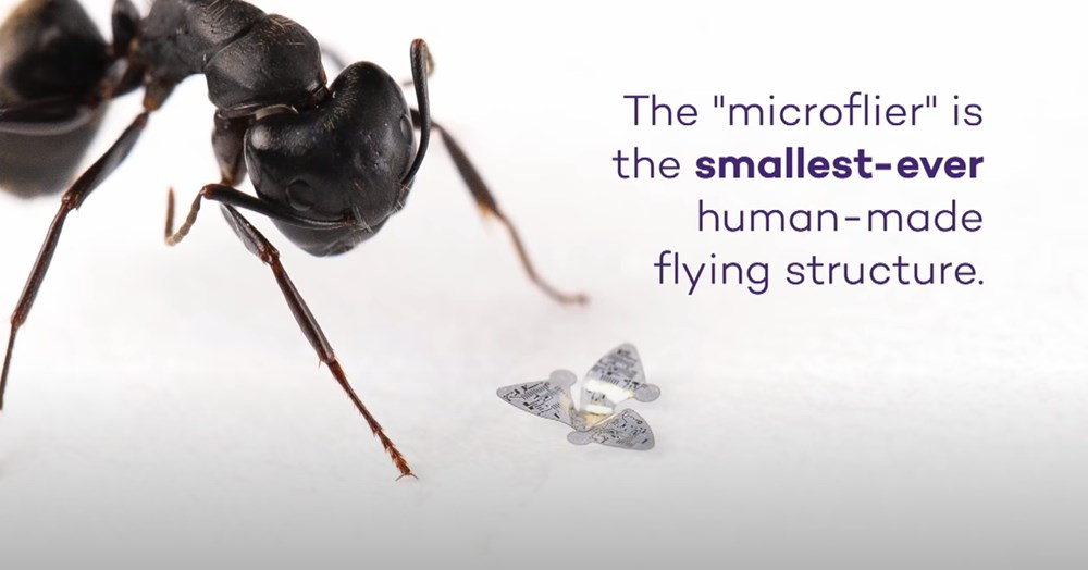 Dünyanın en küçük ve ilk uçan mikroçipi üretildi: Covid-19 ve diğer hastalıkları tespit edecek - 2