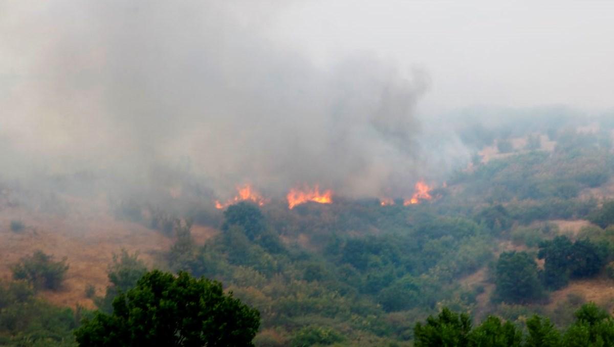 Türkiye sınırındaki yangın kontrol altında