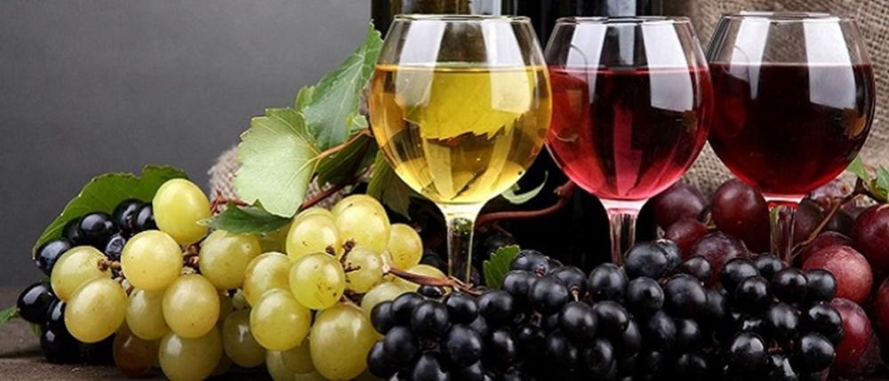 Bağışıklık sistemini güçlendiren besinler (50 sağlıklı besin) - 38