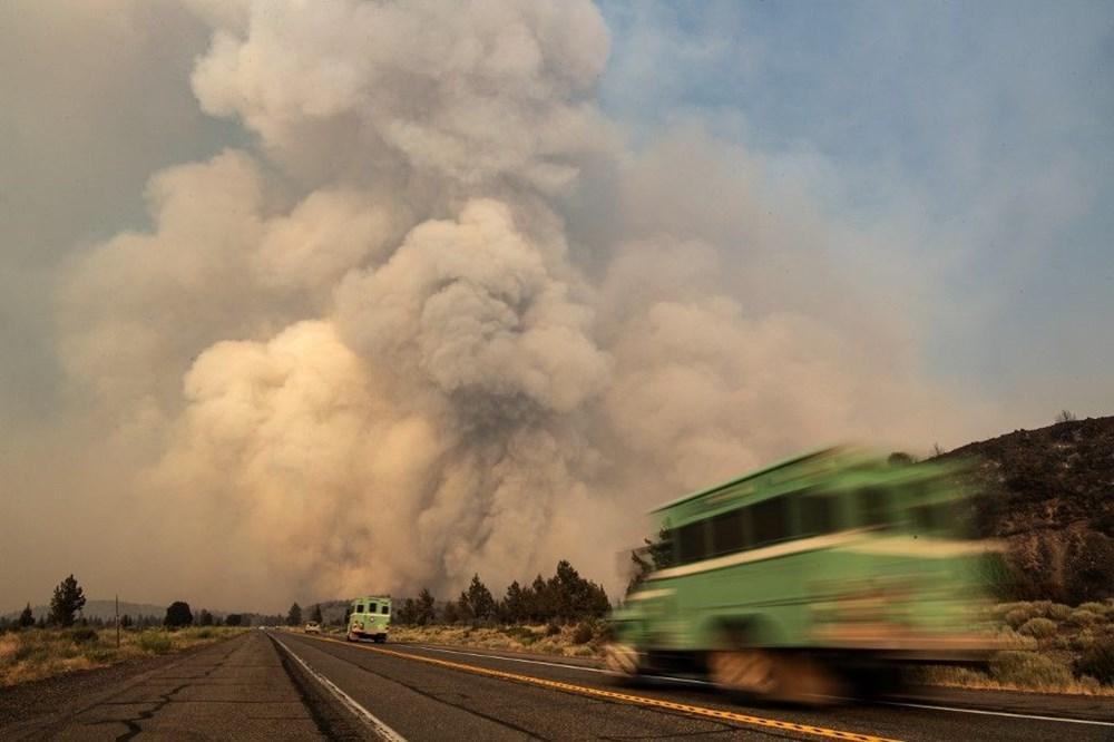 ABD'de aşırı sıcaklar nedeniyle 60'tan fazla orman yangını: Binlerce kişi tahliye edildi - 10