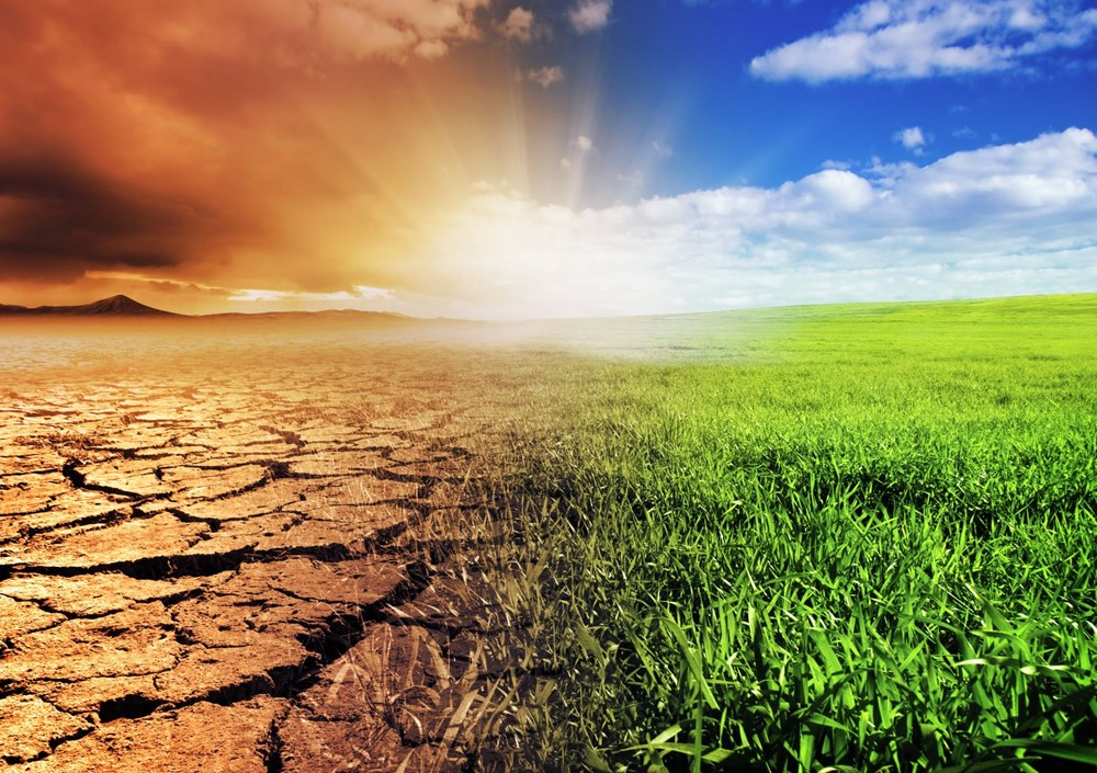 İklim değişikliği on binlerce yıl önce Neandertalleri yok etti - 10