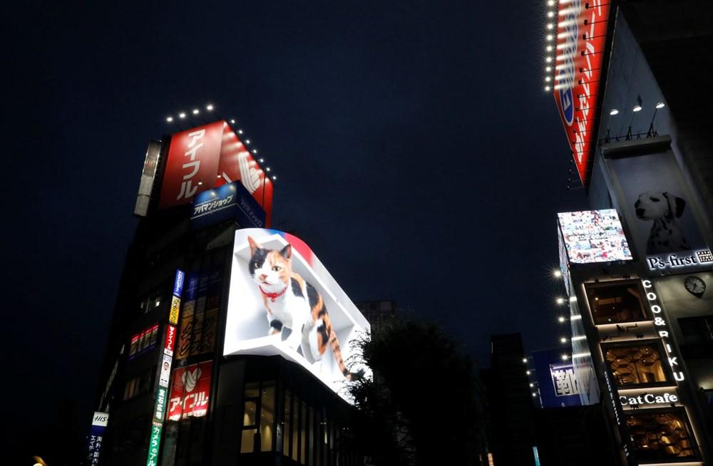 Tokyo'nun yeni misafiri 3 boyutlu kedi: Şehri izliyor ve halkı selamlıyor - 1