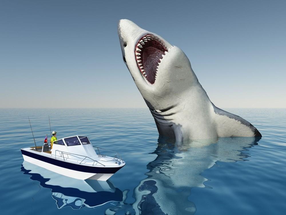 Megalodon köpekbalığının gerçekboyutları ilk kez ortaya çıkarıldı - 5