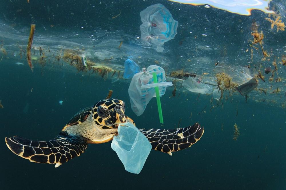 Gıda ambalajları, deniz ve okyanuslardaki plastik kirliliğinin yüzde 75'ini oluşturuyor - 5