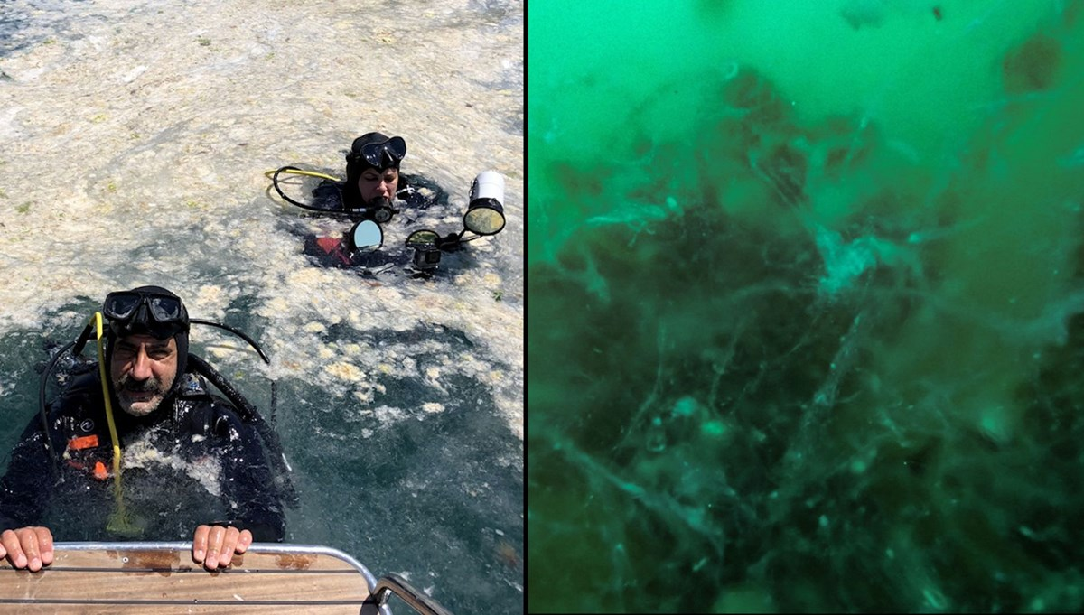 Su altındaki müsilaj felaketi: 30 metre derinliğe kadar müsilaj kaplı