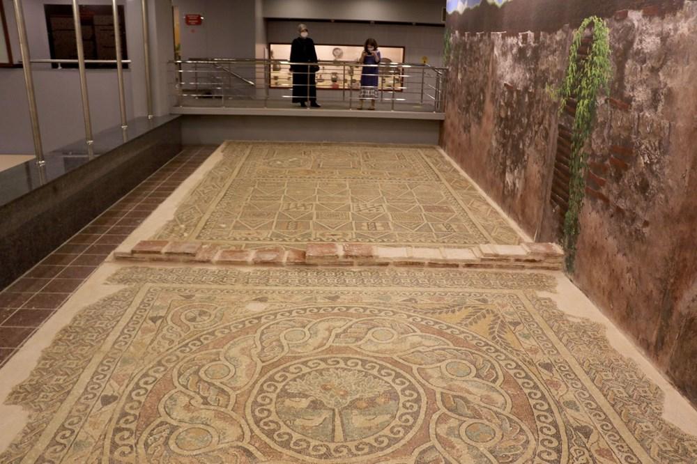 1800 yıllık elma mozaiği sergilenmeye başladı - 4