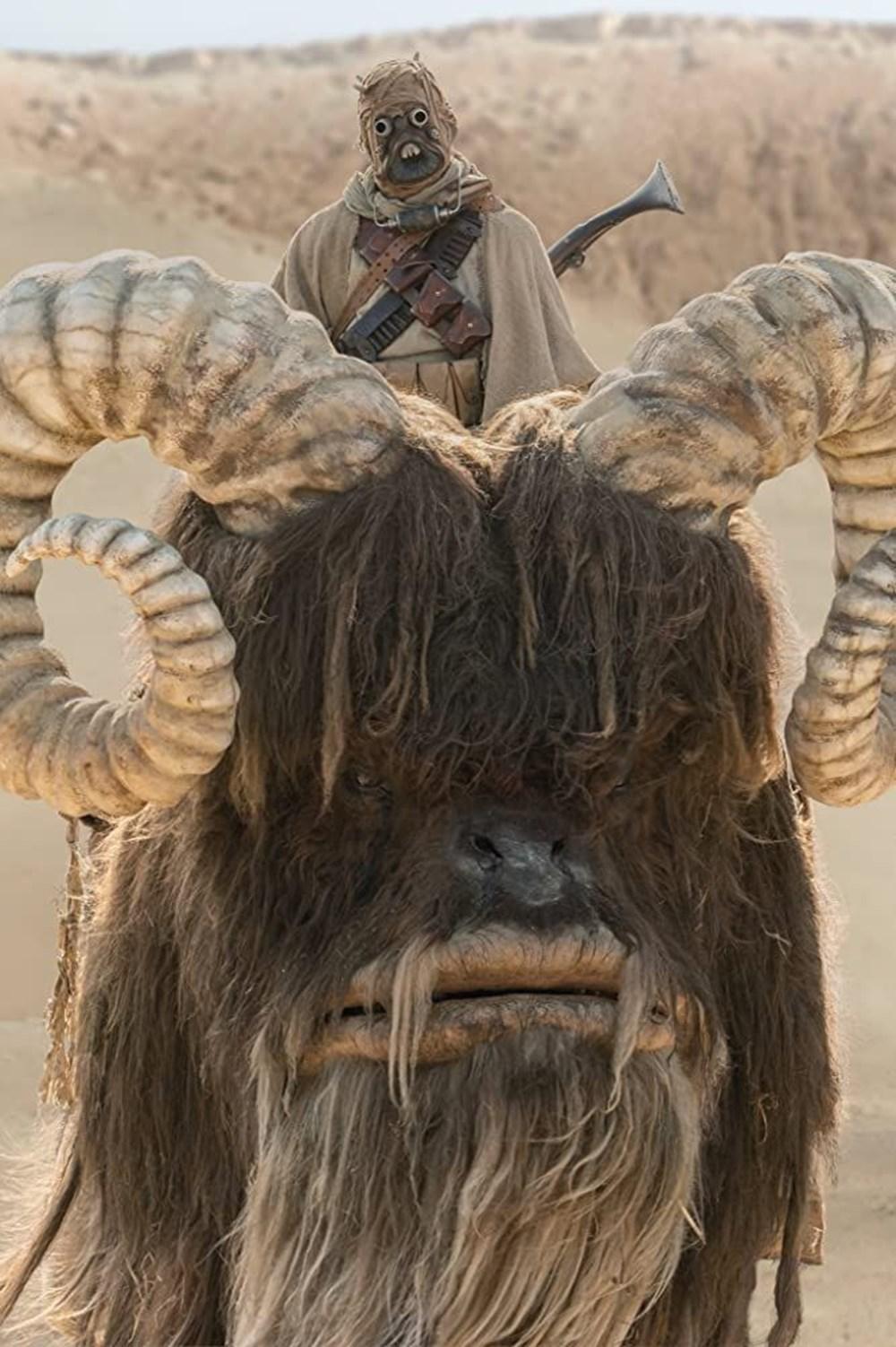 The Mandalorian'ın 2. sezonundan ilk görseller - 2