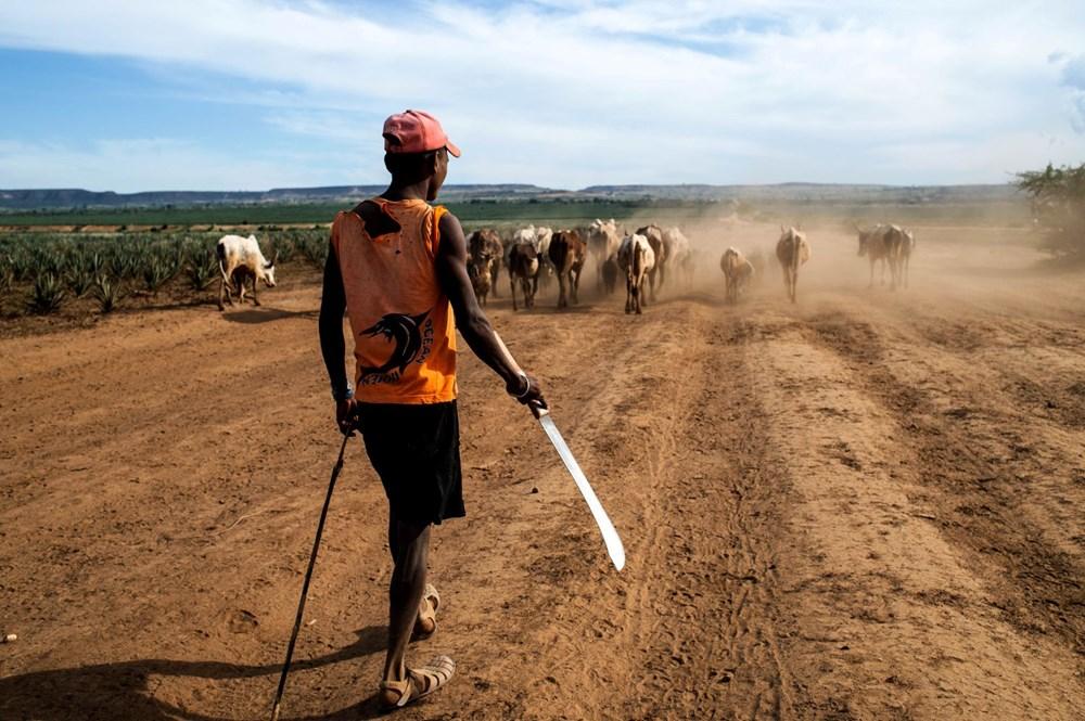 Tarihte sadece iklim krizinden kaynaklanan ilk kıtlık Madagaskar'ı kırıp geçiriyor - 3
