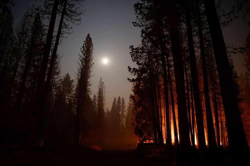 ABD'nin Kaliforniya eyaletinde orman yangınlarıyla mücadele büyüyor: 50 binden fazla evin elektriği kesildi - 6
