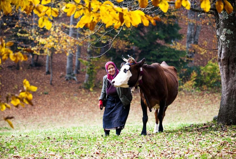 Karadeniz'in çalışkan kadınları: Köy toplansa evde tutamaz - 2
