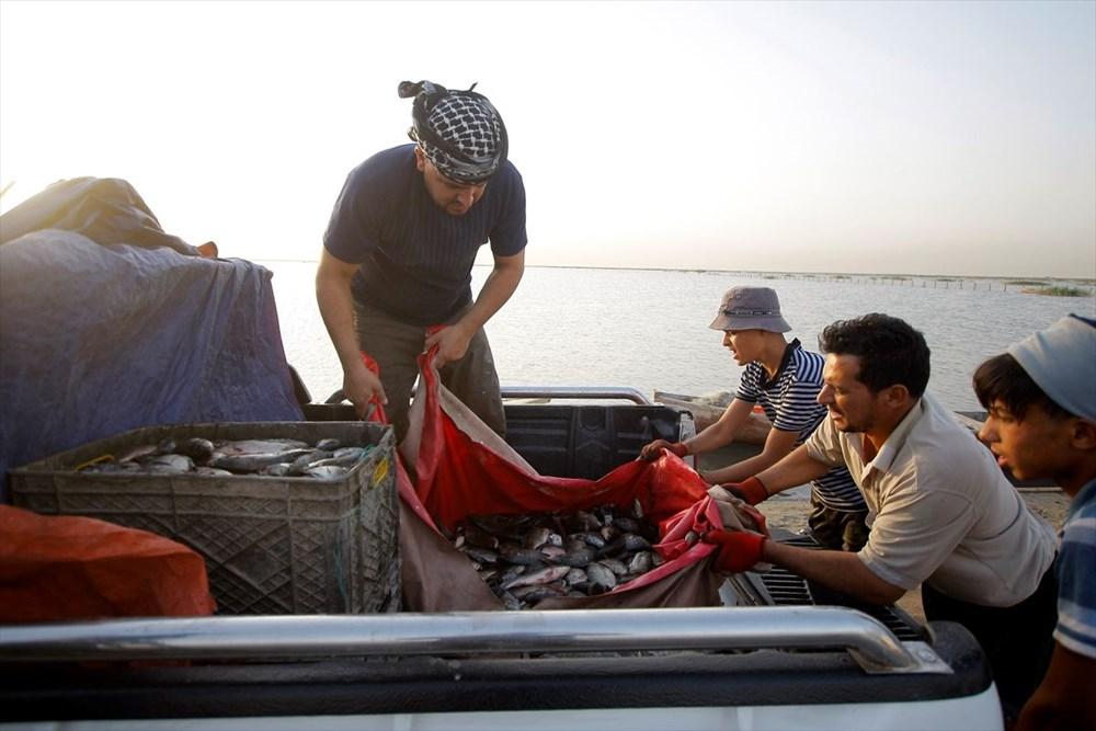 Necef Denizi: Kuraklığın ardından gelen mucize - 49