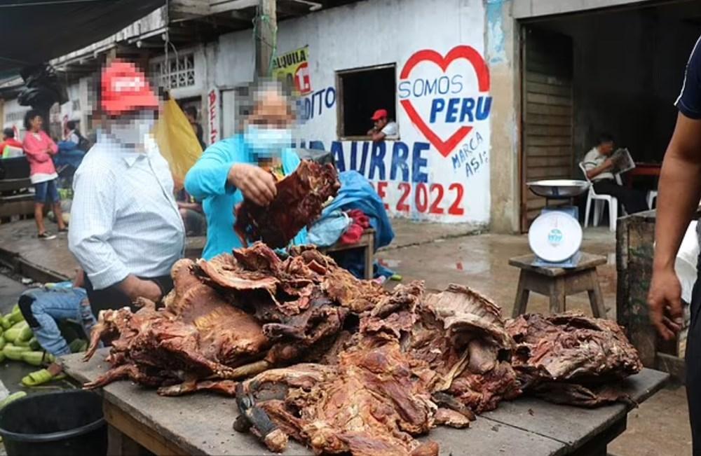 Amazon ormanlarındaki 200'den fazla türün Peru'da yasadışı olarak satıldığı ortaya çıktı: Bilim insanlarından yeni pandemi uyarısı - 3