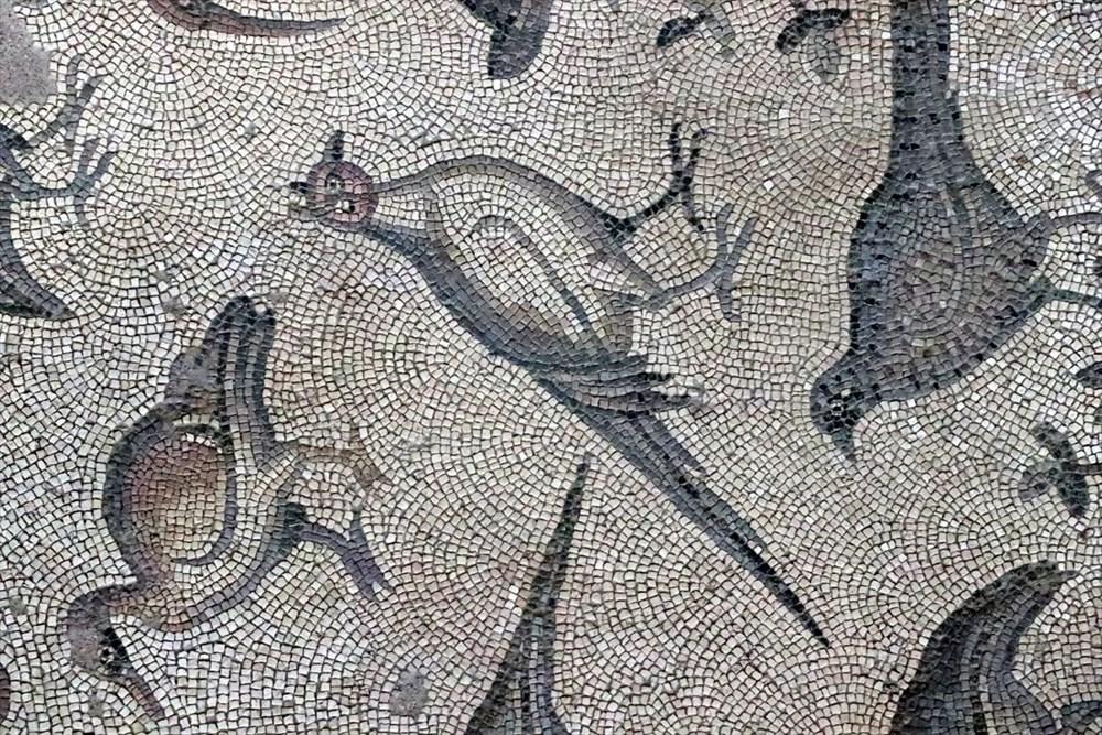 Hatay'da beş dönemin izlerini taşıyan Necmi Asfuroğlu Arkeoloji Müzesi ziyaretçilerini zaman yolculuğuna çıkarıyor - 22