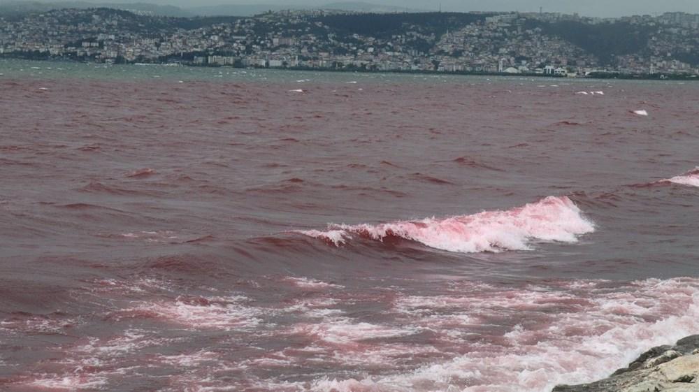 Kocaeli'de Kilez Deresi'ni atık su ile kırmızıya boyayan firmaya ceza - 12
