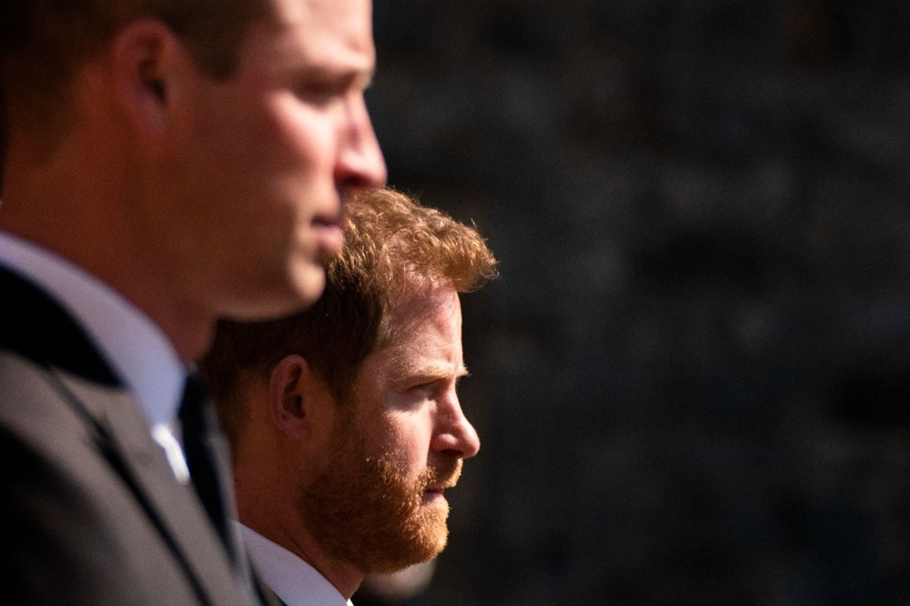 Harry'den sonra Prens William da kitap yazıyor - 11