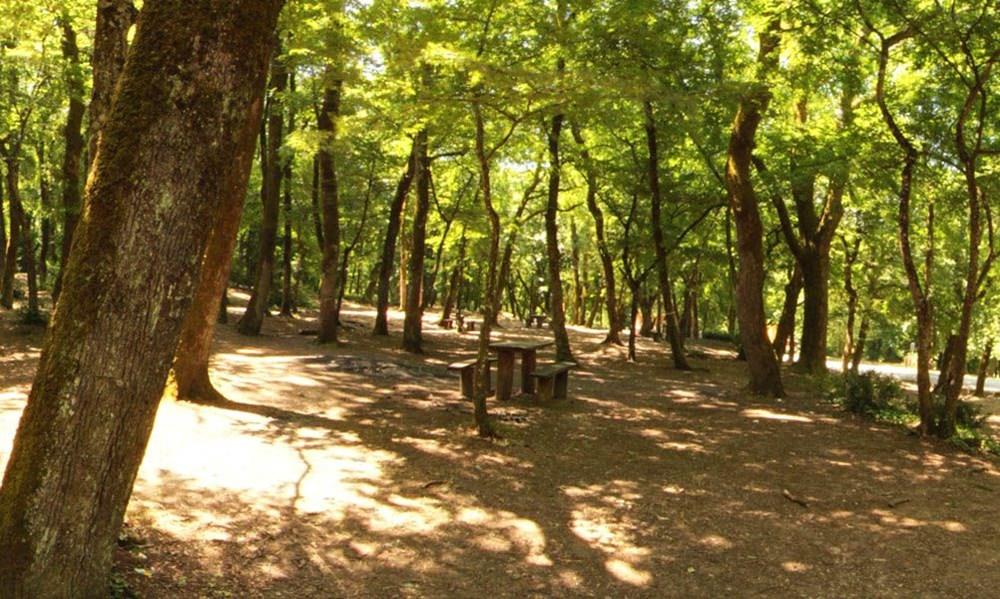 İstanbul'un Tabiat Parkları (İstanbul'daki tabiat parklarının listesi ve isimleri) - 10