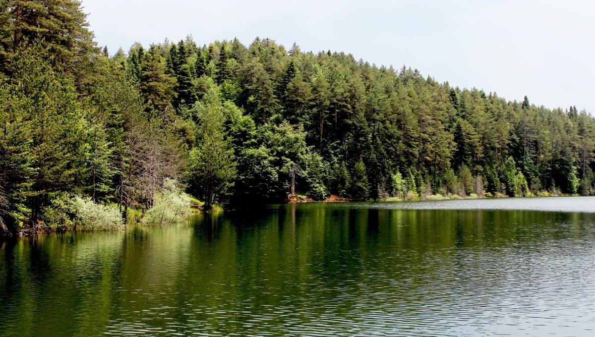Bilim insanlarından uyarı: Göllerdeki oksijen seviyesi son 40 yılda hızla azaldı