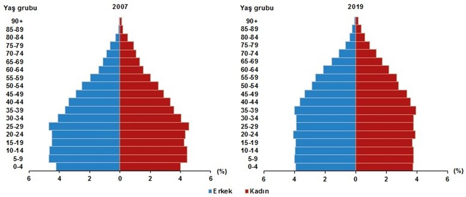 Yaşa göre nüfus piramidi, 2007 ve 2019