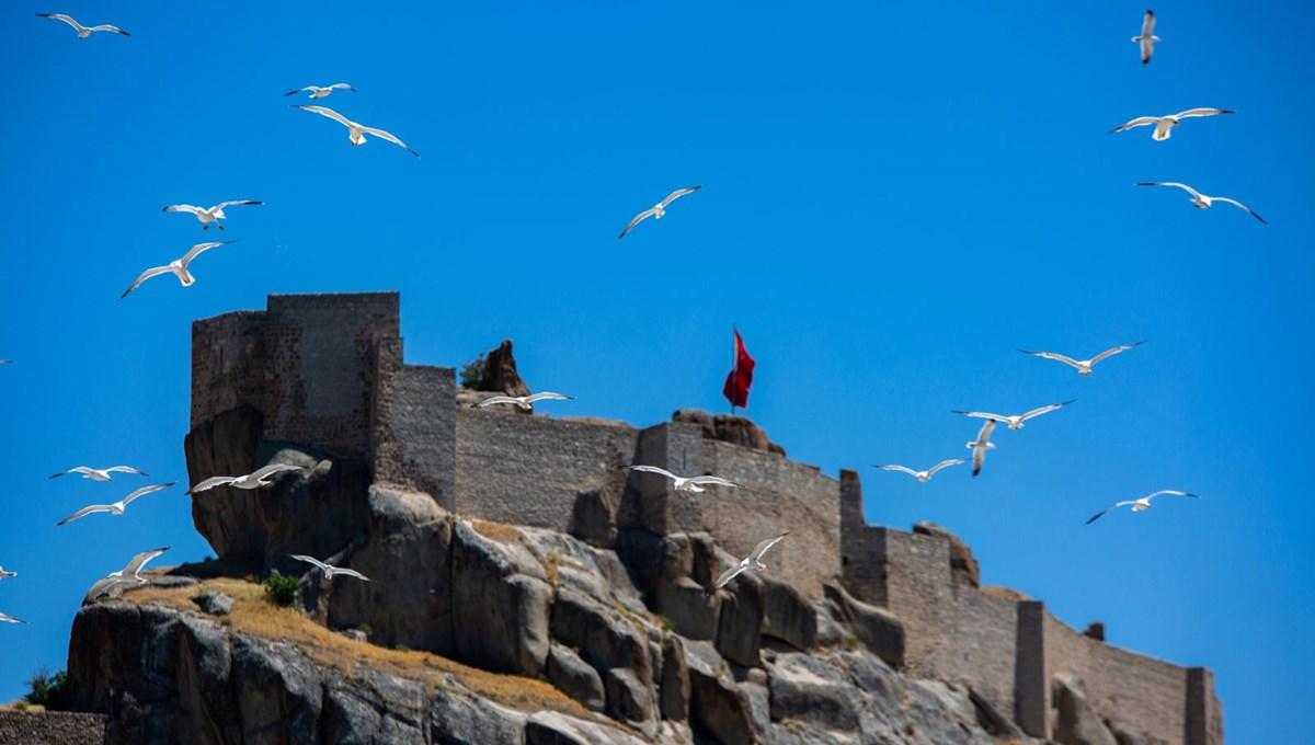 Tunceli'deki Martı Adası, binlerce kuşa ev sahipliği yapıyor