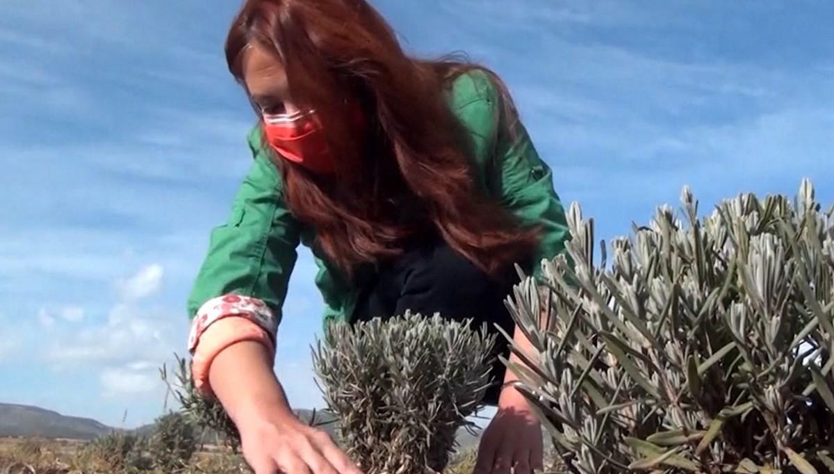 Bugün Toprak Bayramı: Genç ziraat mühendisleri sahaya inecekleri günü bekliyor