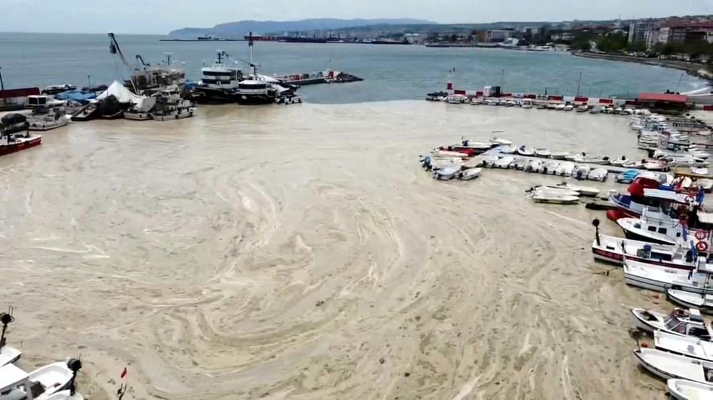 Tekirdağ kıyılarında müsilaj etkisini yitirdi - 11