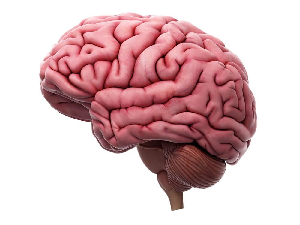 Sağlıklı beyin için 11 öneri - 2