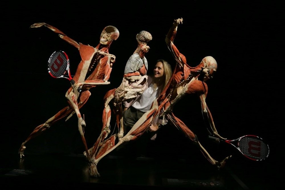 Lordlar Kamarası'ndan kadavra sergisine tepki - 2