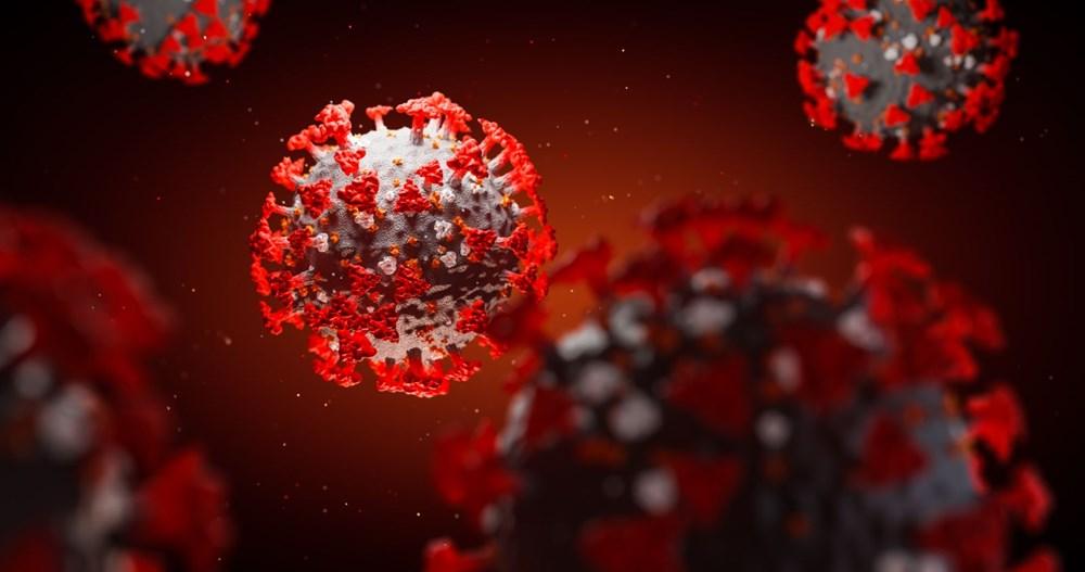"""Kan grubu """"O"""" veya """"negatif"""" olanların corona virüse yakalanma riski daha az - 8"""