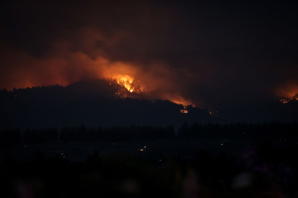 Gelibolu Yarımadası'nda orman yangınında son durum - 7