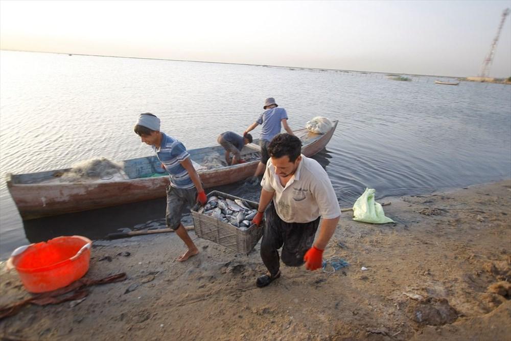 Necef Denizi: Kuraklığın ardından gelen mucize - 48